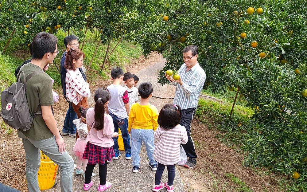 趣味活動民宿「岩川森林民宿莊園餐廳」環境照片